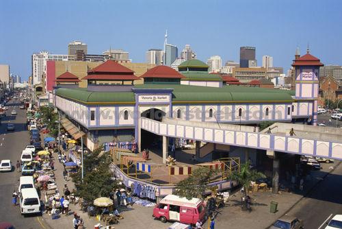 Saving Durban's Medicinal Plants