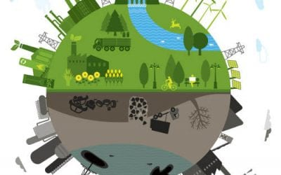 Ecological Development Around the World